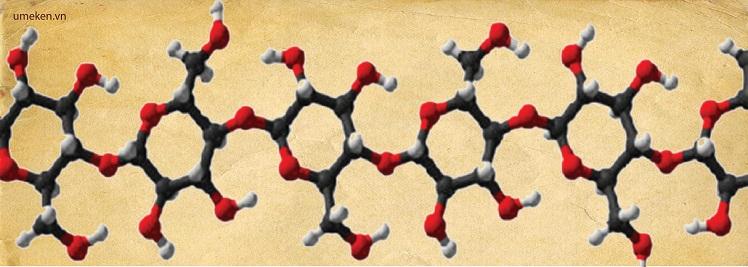 beta-glucan-ball-5
