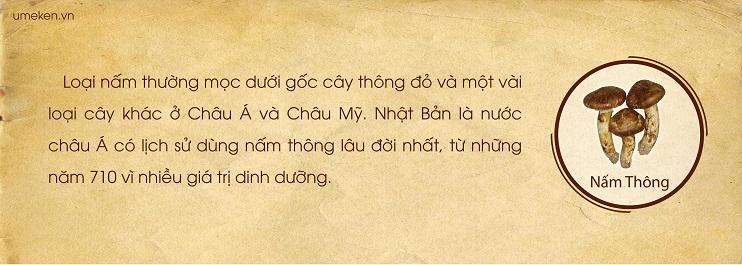 nam-thong